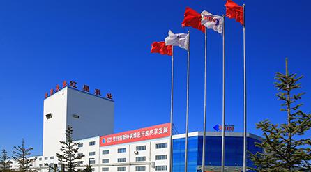 酷站科技签约红星乳业绿色乳制品集团官方网站建设